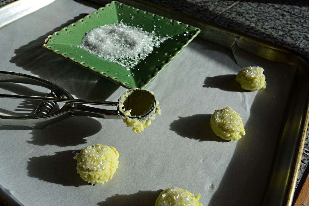 Lemon Snap Snaps Ready for Baking