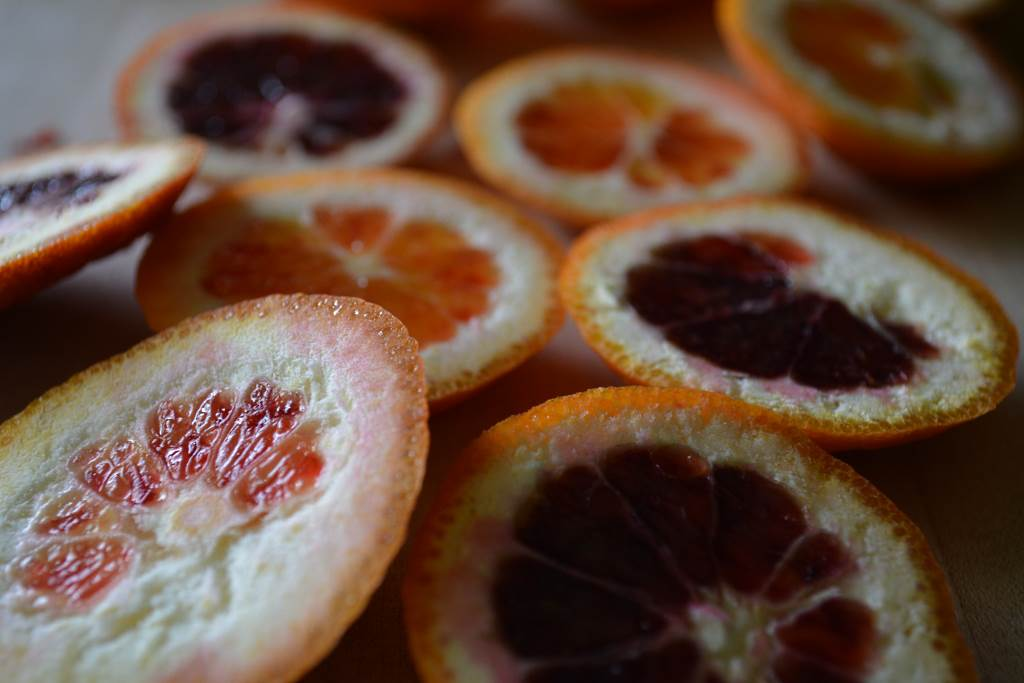 Blood-Orange-Tops