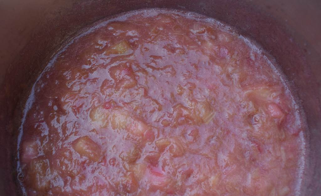 Making-Rhubarb-Sauce-quck-and-easy