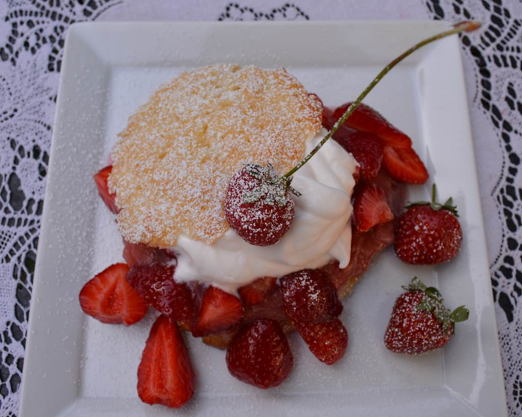 Strawberry Shortcake with Rhubarb Sauce