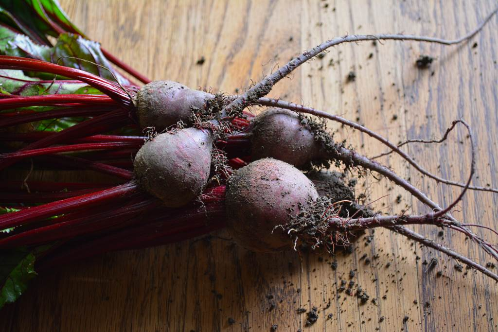 Fresh-from-Ground-Dirty-Beets