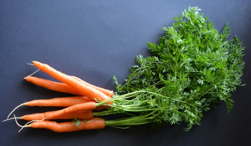 Valley-Flora-Farm-Carrots